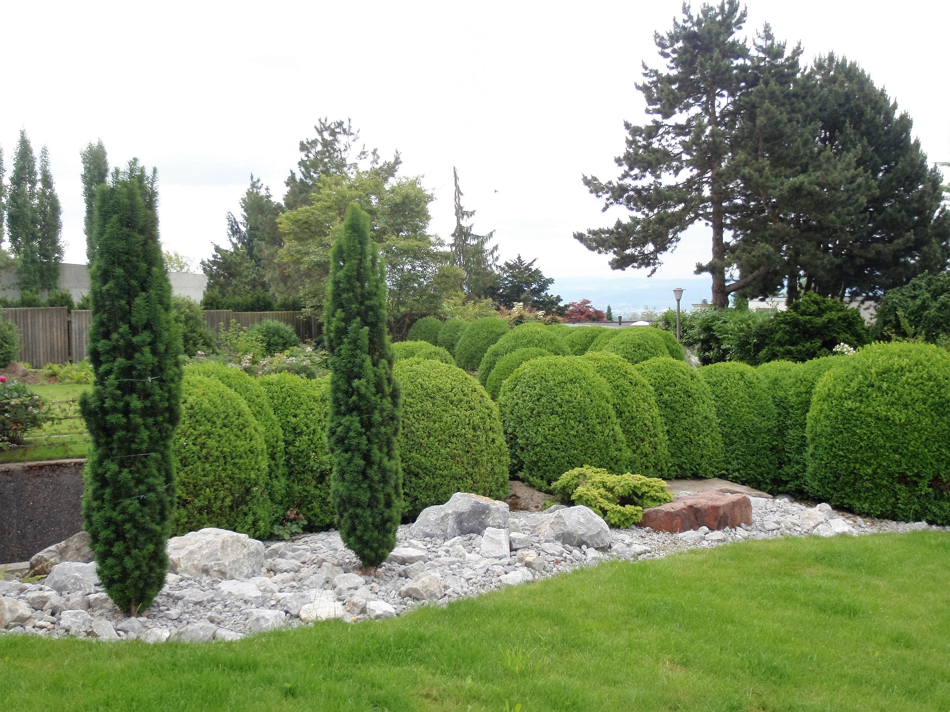 Evergreen Gartenbau gartenbau biotop bis steingarten bieten wir alles an